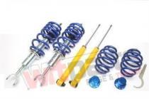 Adjustable coilover kit A6,  Superb,  Passat EVOGWAU03