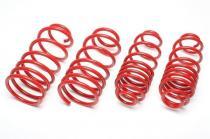 Lowering springs for Audi TT 1.8T 20V EVOAU086F